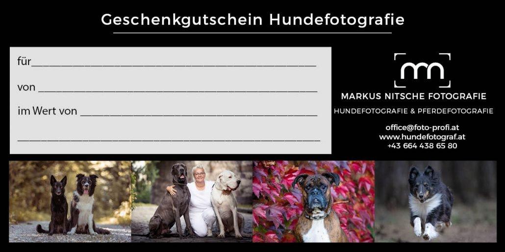Geschenkgutschein Hundefotografie personalisiert